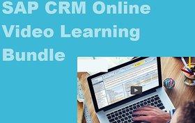 Sap Crm Online Video Learning Ebooks Set