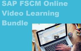 Sap Fscm Online Video Learning Ebooks Set