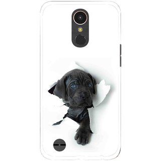Snooky Printed Cute Dog Mobile Back Cover For LG K10 2017 - Multi