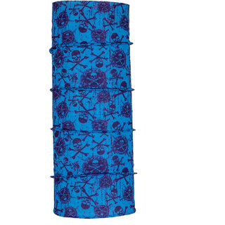 Autofy Unisex Skull Print Lycra Headwrap / Bandana (Blue and Purple, Freesize)