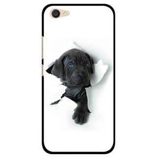 Snooky Printed Cute Dog Mobile Back Cover For Vivo V5 Plus - White
