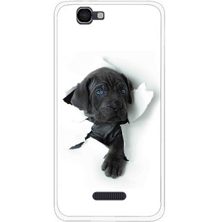 Snooky Printed Cute Dog Mobile Back Cover For Micromax Canvas 2 A120 - White