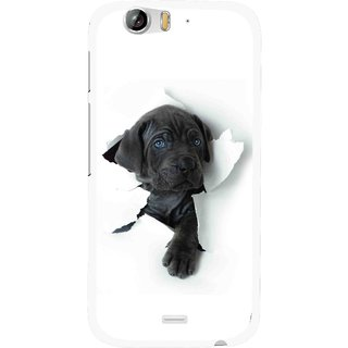 Snooky Printed Cute Dog Mobile Back Cover For Micromax Canvas Turbo A250 - White
