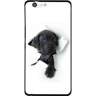 Snooky Printed Cute Dog Mobile Back Cover For Gionee Marathon M5 - White