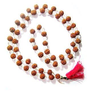 Yuvi Shoppe Rudraksha Crystal 108 Bead Mala, Rudraksha Septik Mala