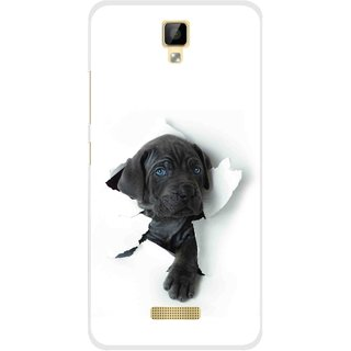 Snooky Printed Cute Dog Mobile Back Cover For Gionee P7 - Multicolour
