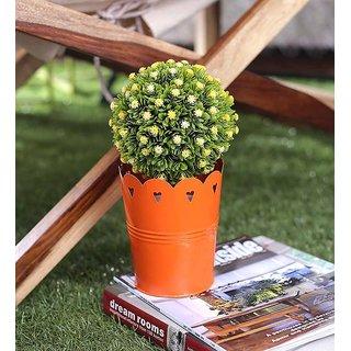 Color Palatte Planter Cum Pot