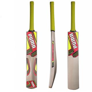 Kashmir Willow Leather Bats 100 Original
