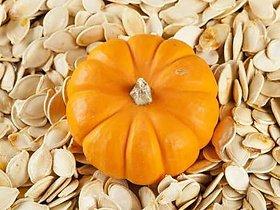Pumpkin Seeds Best Quality (100g)