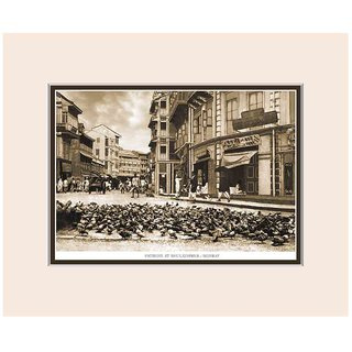 Old Vintage Bombay (Mumbai) Mounted Photo Frame of View of Pigeons at Bhuleshwar