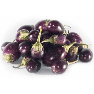 ChuChu Brinjal Super Advanced Seeds