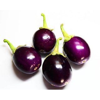 Seeds Little ChuChu Brinjal Premium Exotic Seeds For Kitchen Garden