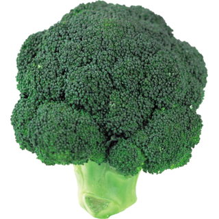 Exotic Broccoli Seeds
