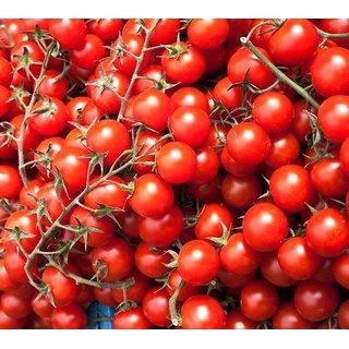 Hybrid Red Cherry Tomato Super Vegetables Seeds