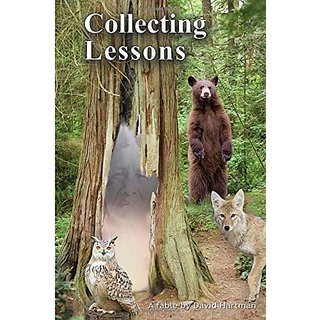 Collecting Lessons: A Fable By Wellness Press; 1 edition (11 August 2015)