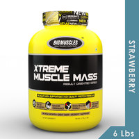 Big Muscles Xtreme Muscle Mass 6 Lbs Strawberry