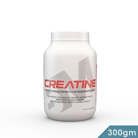 BIG MUSCLES CREATINE 300 GMS