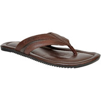 Allen Cooper ACLS-226 Brown Leather Slippers For Men
