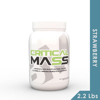 Big Muscles Critical Mass 2.2 Lbs (Strawberry )