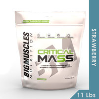 Big Muscles Critical Mass 11Lbs (Strawberry )