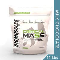 Big Muscles Critical Mass  11 Lbs (Milk Chocolate)