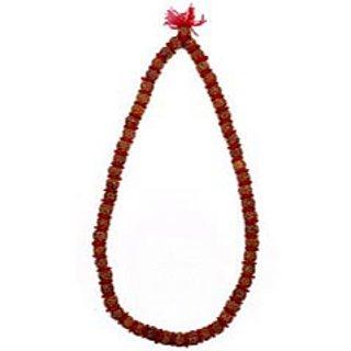 shoppingtara Rudraksha Rosary