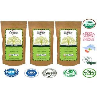 Radico 100 Organic Amla Powder - 100g (Set of 3)