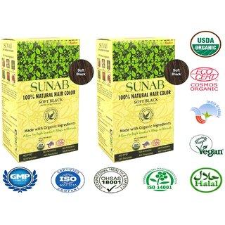 Radico Sunab Herbal Soft Black Hair Color - 100g (Set of 2)