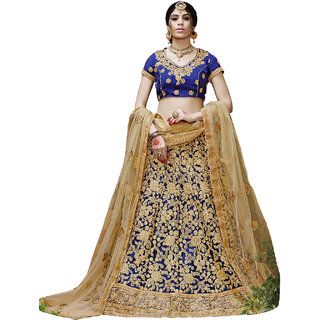 Melluha Royal Blue Net Lehenga With Chiku Net Dupatta