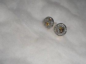Arista Elegant stylish Earrings