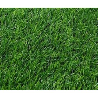 Corsa PVC Door Mat Soft and durable door rug artificial green grass (2.5 X 3 FEET)