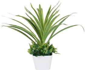 Adaspo Artificial Grass Tree With Beautiful Look In Melamine Pot