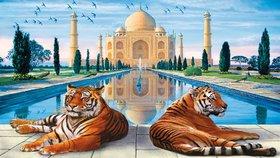 Tajmahal Photo Frame - Tigers