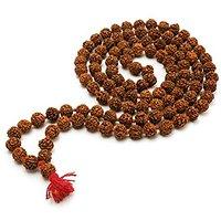 South Adda Natural 108+1 beads Rudraksha Mala