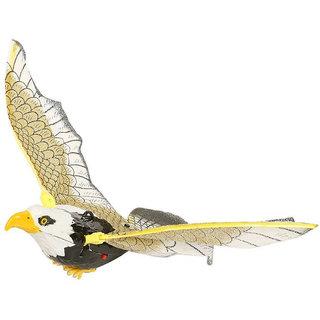 PTCMART eagle fly