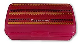 tupperware container (sandwich keeper oblong)