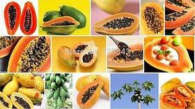 Good Quality Papaya Seeds (10gm)