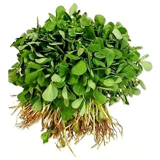 Methi (Fenugreek) Hybrid Vegetables Seeds