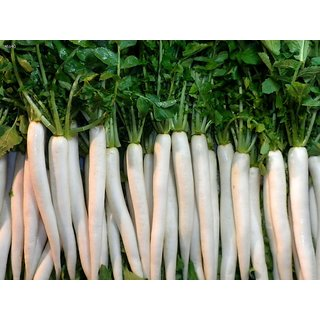 R-DRoz White Radish Super Seeds