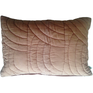 Blooms Pillow Brown Pillow and sham sets