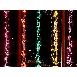 Led Rice Lights set of 4 for Christmas