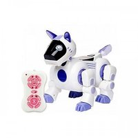 Remote Controlled Multifunction Educational Smart Dog