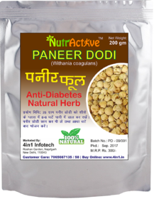 , Paneer Dodi  Indian Rennet  Paneer Doda  Withania coagulans  Anti -Diabetic and weight loss herb - 200 gm