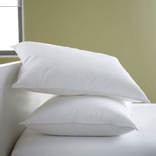 Softtouch Premium Reliance Fiber Pillow Set of 2-43x67