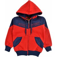 Come In Kids Boys / Kids Full Sleeve Hooded Winter Wear Printed Sweatshirt