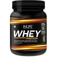 Inlife Whey Protein Powder - 1lb (Chocolate Flavour)