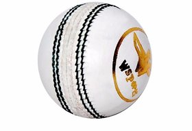 W sports 4 Piece  - Test Genuine Leather Hand Sewn - Pack of 1 (4 Piece ball) White color