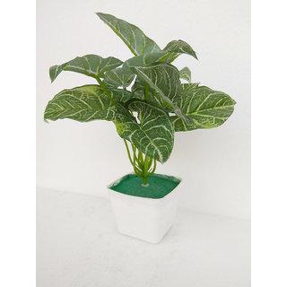 Adaspo artificial Money Plants With Melamine Pot (Dark Green)