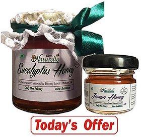 Farm Naturelle 1 Eucalyptus Forest Honey 250 Gms + 40 Gms Flower Honey