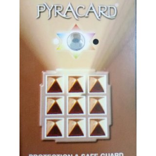 Pyracard  Protection  Safe-Guard